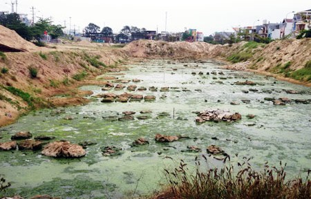 """Dự án chung cư """"gói 30.000 tỷ đồng"""" ở Đà Nẵng thành… ao nuôi muỗi"""