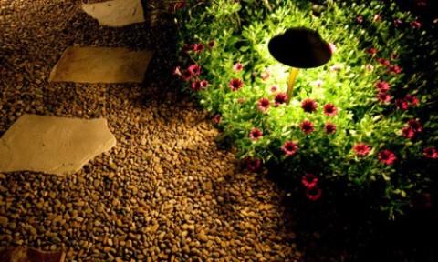 Lắp đèn chiếu sáng cho vườn thêm lung linh