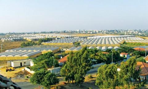Phép màu kỹ thuật nông nghiệp tại ISRAEL