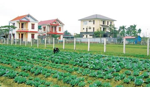 Nông thôn mới sau 3 năm thực hiện – Triển vọng từ thực tiễn