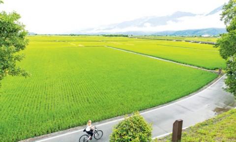 Xây dựng nông thôn cấp cơ sở ở Châu Á với thực tiễn Việt Nam