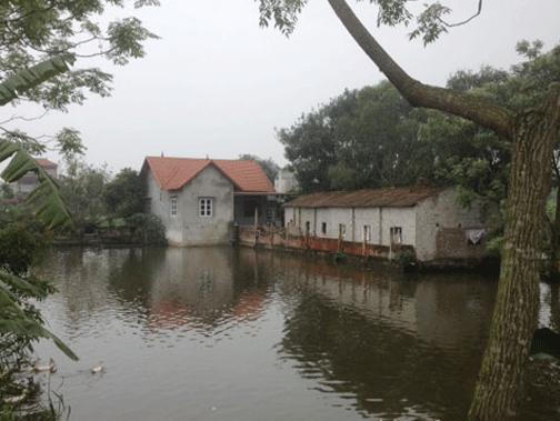 Ông Trần Văn Bánh xây nhà kiên cố trên diện tích đất đấu thầu.