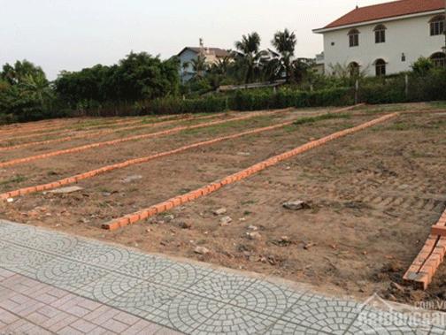 Đất phân lô tự xây đắt khách