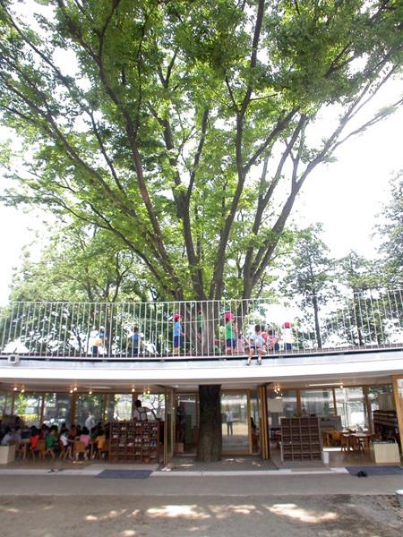 Cây xanh được giữ nguyên tỏa bóng mát cho trẻ lúc nghỉ ngơi, chỗ trẻ leo trèo và làm đẹp cho ngôi trường.