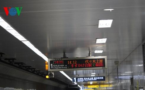 Nhật Bản sử dụng nhiều đèn LED cho hệ thống chiếu sáng công cộng