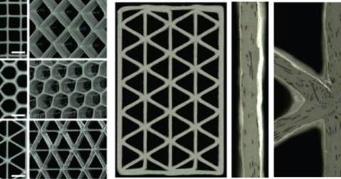Phát triển vật liệu xơ carbon thay thế nguyên liệu gỗ balsa