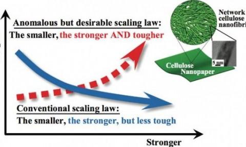 Vật liệu làm từ sợi cellulose có khả năng tự phục hồi