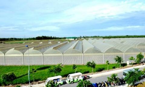 Hà Nội đầu tư gần 600 tỷ đồng cho nông nghiệp công nghệ cao