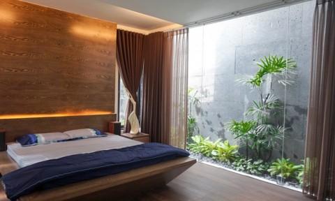 Ngôi nhà trong hẻm Sài Gòn với vườn xanh mát