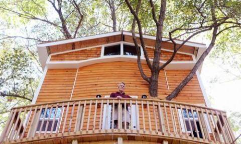 Ngôi nhà cổ tích trên cây