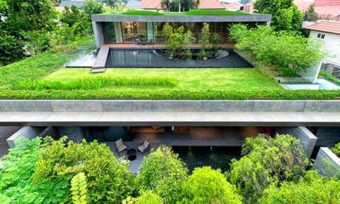 Ngôi nhà xanh trong lòng thành phố
