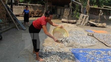 Cuộc sống của người dân tái định cư thủy điện Sơn La ở xã Mường Giàng, huyện Quỳnh Nhai, tỉnh Sơn La. (Ảnh: Công Luật/TTXVN)