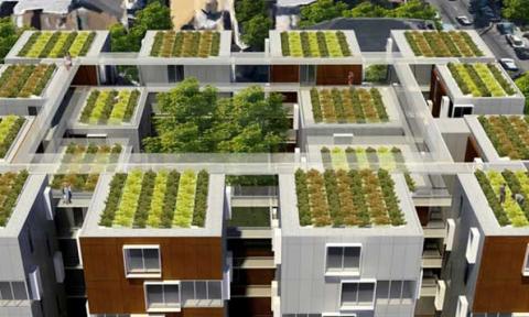 Pháp ban hành đạo luật bắt buộc phủ xanh hoặc lắp pin năng lượng mặt trời cho toàn bộ các mái nhà
