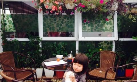 Lucky Garden – Góc sân và khoảng trời bình yên