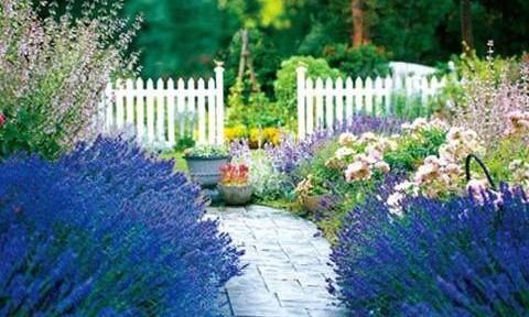 Lối đi sân vườn sang – sáng – sạch với gạch lát