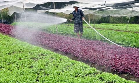 Đến năm 2020: 80% số xã của Hà Nội đạt chuẩn nông thôn mới