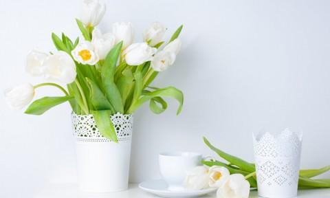 Trang trí hoa tươi độc đáo thổi bùng sức sống cho căn nhà