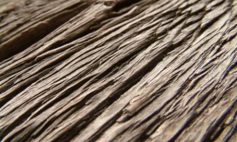 Thiết kế vật liệu mang cấu trúc tự nhiên