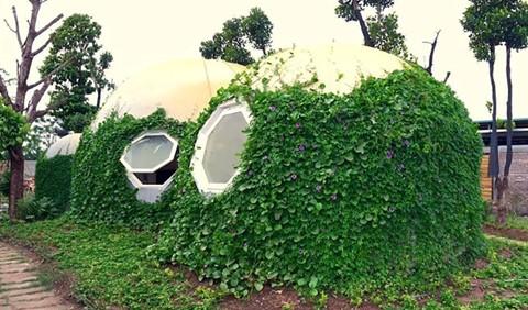 Ông bố Hà Nội làm ngôi nhà tròn kỳ lạ theo ước mơ của con