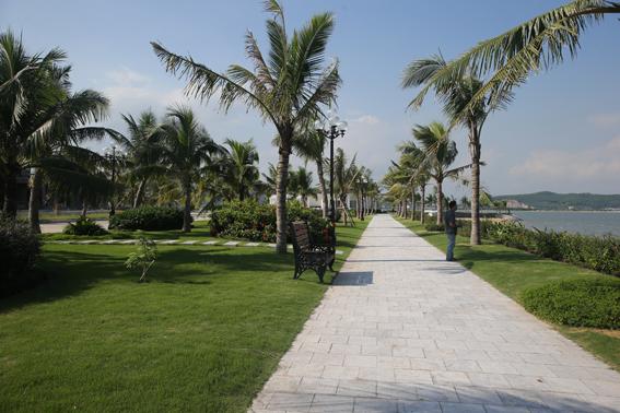 Khuôn viên cây xanh được thiết kế bao quanh khu nghỉ dưỡng