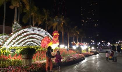 Ngoài ra đường hoa còn được trang trí trước HĐND TPĐà Nẵng cũ và ở các địa điểm dọc vỉa hè phía tây đường Bạch Đằng, hai bên Cầu Rồng cho du khách tham quan chụp ảnh. Ảnh Tùng Anh
