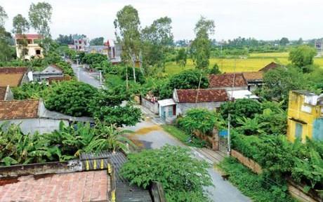 Quy hoạch xây dựng nông thôn: Động lực để phát triển toàn diện