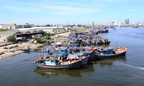 Đà Nẵng sẽ xây dựng Cảng cá lớn nhất miền Trung
