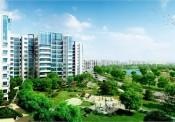 Chiến lược quản lý không gian đô thị xanh