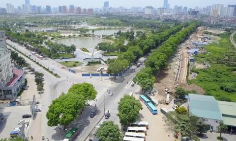 Lại nói về việc chặt cây xanh ở Hà Nội