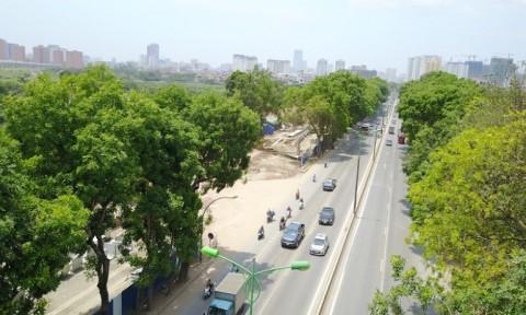 Quy hoạch xây dựng đô thị: Phải gắn với phát triển cây xanh