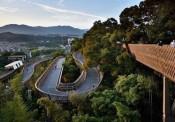 Trung Quốc xây dựng con đường đi bộ tuyệt đẹp trên ngọn cây