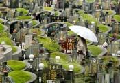 Khủng hoảng đất nghĩa trang ở châu Á