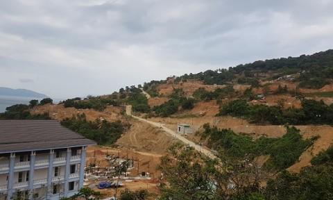 Sơn Trà & câu chuyện quy hoạch
