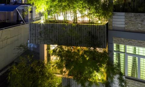 Căn nhà rợp bóng tre xanh tại TPHCM khiến ai đi qua cũng thích thú