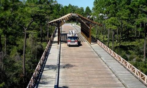 Những cây cầu bằng gỗ là một giải pháp hiệu quả cho vùng nông thôn