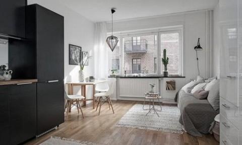 Căn hộ một phòng trang nhã ở Thụy Điển cung cấp đầy đủ chức năng sống