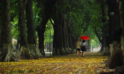 """Thủ đô xanh và đúc kết """"3Đ"""" của Chủ tịch Hà Nội"""