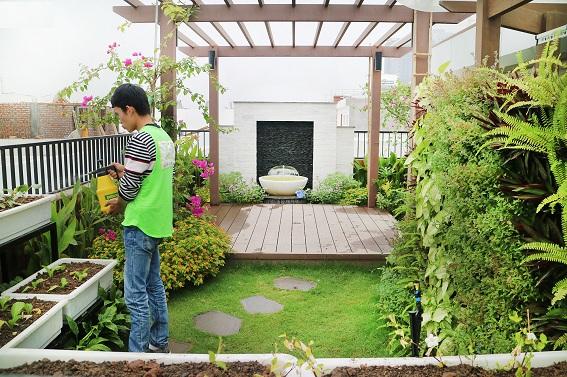 Được chăm sóc bởi những nhân viên am hiểu về cây xanh mang đến không gian xanh mát