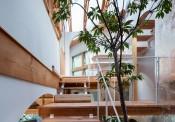 Nhà 2 tầng gây xôn xao giới kiến trúc vì thiết kế… lạ