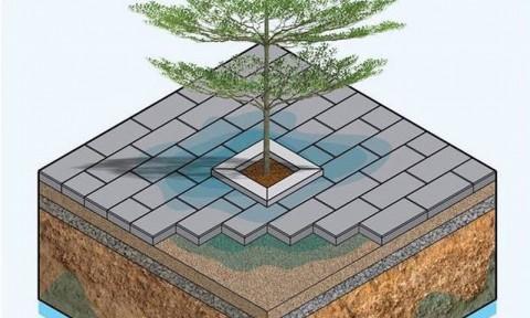Gạch lát xuyên nước – Vật liệu cho thành phố xanh