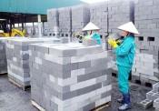 Bình Thuận: Thẩm định đề cương, dự toán kinh phí lập Quy hoạch phát triển VLXD tỉnh