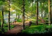 Hà Nội sắp xây dựng Công viên sinh thái Vĩnh Hưng rộng 15 ha