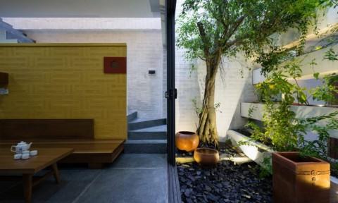 Cần Thơ House: Căn nhà của Ký ức và Hiện tại