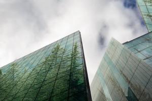 Thách thức của đô thị hóa đối với hệ sinh thái