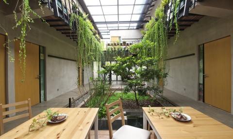 Ngôi nhà với ý tưởng nông nghiệp đô thị