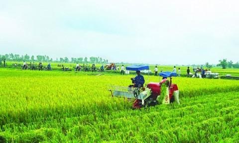 Phát triển nông thôn thích ứng với thiên tai