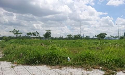 Bất động sản TPHCM: Giao dịch đất nền bất ngờ giảm mạnh