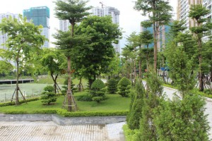 Công viên hồ điều hòa Nhân Chính đi vào sử dụng: Thêm không gian đô thị xanh