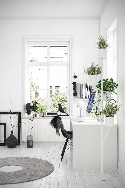 Góc làm việc phong cách Scandinavian mang tone trắng chủ đạo cùng nhiều cây xanh. Hãy nhấn nhá một chút bằng các chi tiết mềm mại, như: thảm lông, đồ trang trí sáng tạo, đèn bàn độc đáo...