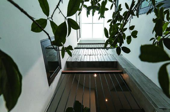 Thiết kế tổ chức giếng trời nhằm nâng cao tính tiện nghi và sinh thái cho không gian nội thất nhà phố